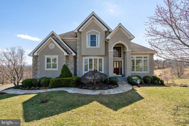 17930 Stoneleigh Drive, ROUND HILL, VA 20141 (#VALO377830) :: ExecuHome Realty