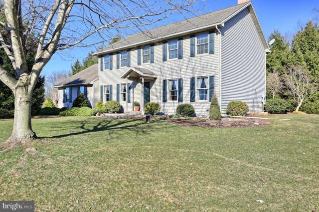 206 Alanthia Lane, ETTERS, PA 17319 (#PAYK113288) :: The Heather Neidlinger Team With Berkshire Hathaway HomeServices Homesale Realty