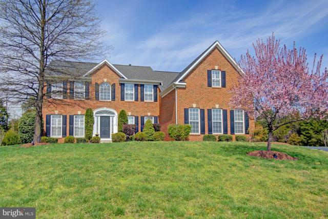 42989 Lago Stella Place, ASHBURN, VA 20148 (#VALO378456) :: The Vashist Group