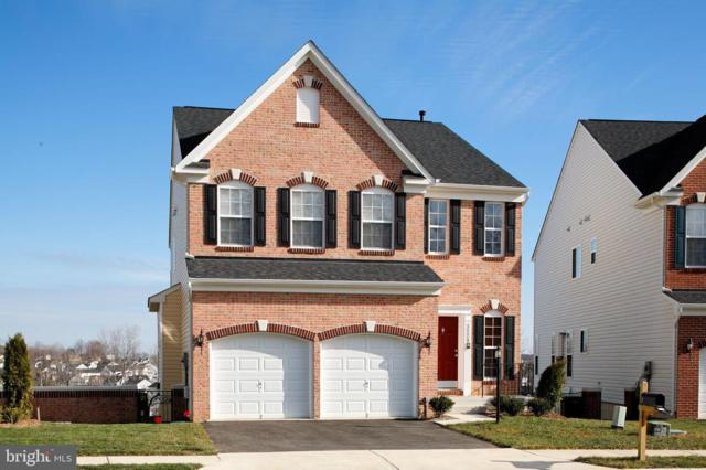 429 Boxelder Drive, STAFFORD, VA 22554 (#VAST208736) :: Colgan Real Estate