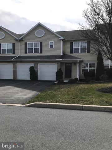 133 Peregrine Lane, HUMMELSTOWN, PA 17036 (#PADA108412) :: The Heather Neidlinger Team With Berkshire Hathaway HomeServices Homesale Realty