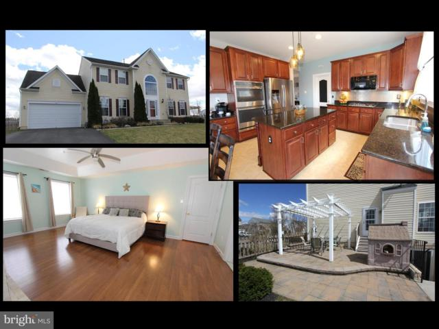 222 Polaris Drive, WALKERSVILLE, MD 21793 (#MDFR243212) :: The Gus Anthony Team