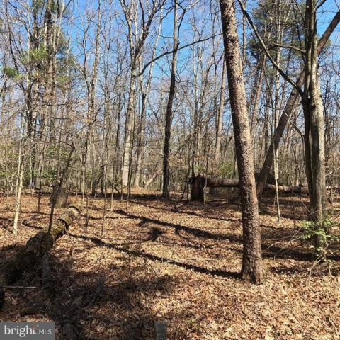 Forest Walk Dr, SPOTSYLVANIA, VA 22551 (#VASP210560) :: Blue Key Real Estate Sales Team
