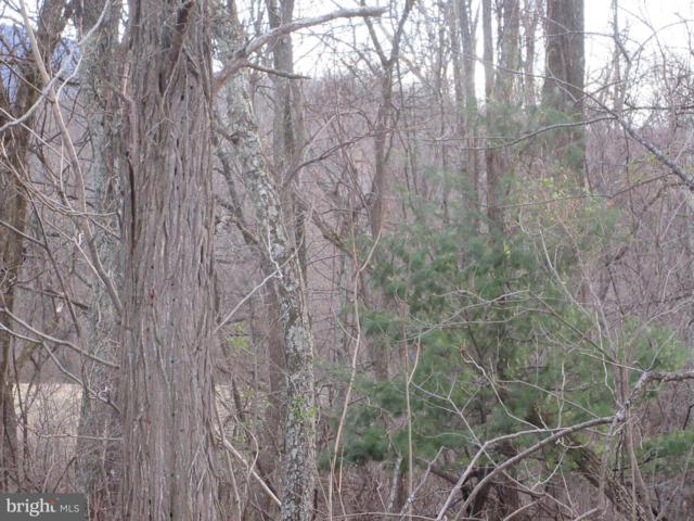 LOT 2A1 Smith Run Road, BENTONVILLE, VA 22610 (#VAWR136188) :: Bruce & Tanya and Associates