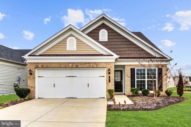 21 Whaleback Lane, FREDERICKSBURG, VA 22406 (#VAST208824) :: The Riffle Group of Keller Williams Select Realtors