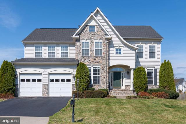 42089 Bear Tooth Drive, ALDIE, VA 20105 (#VALO379176) :: The Greg Wells Team