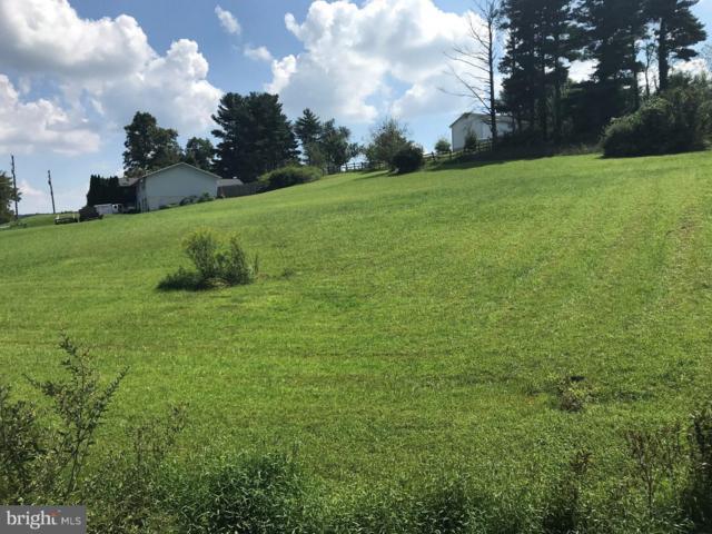 1645 Buckaroo Drive, AUBURN, PA 17922 (#PASK125002) :: Remax Preferred | Scott Kompa Group