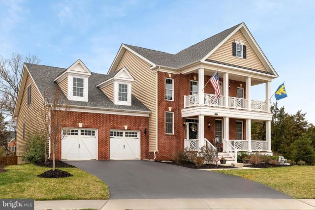 24267 Purple Finch Drive, ALDIE, VA 20105 (#VALO379210) :: Pearson Smith Realty