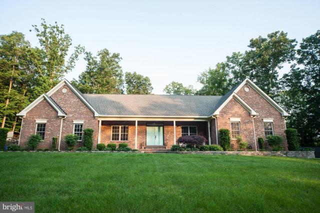 15204 Black Ankle Road, MOUNT AIRY, MD 21771 (#MDFR243446) :: Dart Homes