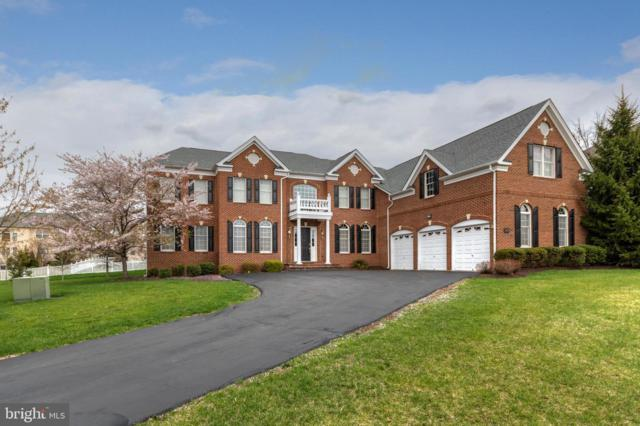 20120 Black Diamond Place, ASHBURN, VA 20147 (#VALO379246) :: The Greg Wells Team