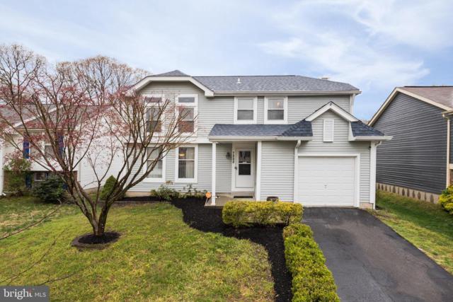 7888 Pepperbox Lane, PASADENA, MD 21122 (#MDAA394204) :: Colgan Real Estate