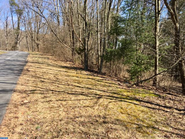 0 S Wilbert Avenue, ORWIGSBURG, PA 17961 (#PASK125032) :: Younger Realty Group