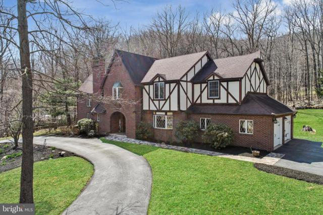 10109 Ore Banks Drive SW, LAVALE, MD 21502 (#MDAL131260) :: Eng Garcia Grant & Co.