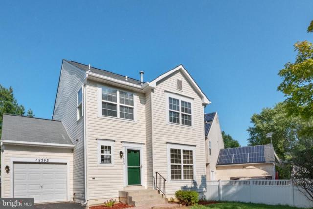12503 Eagle View Way, GERMANTOWN, MD 20876 (#MDMC649840) :: Remax Preferred | Scott Kompa Group