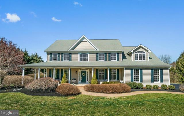2801 Sommersby Road, MOUNT AIRY, MD 21771 (#MDCR187108) :: Pearson Smith Realty