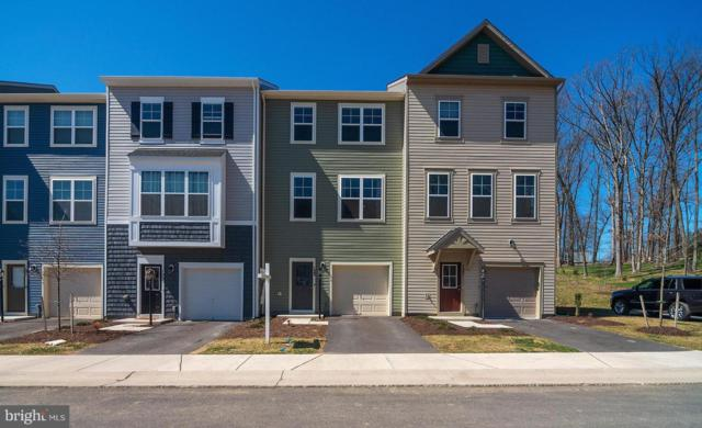 125 Fading Star Ct, STEPHENSON, VA 22656 (#VAFV149644) :: Colgan Real Estate