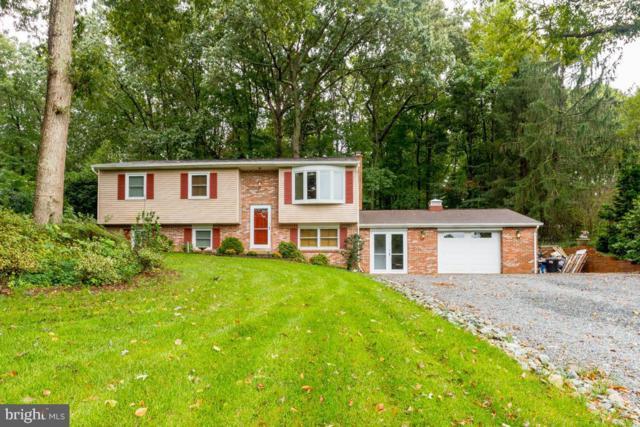 27022 Dogwood Lane, MECHANICSVILLE, MD 20659 (#MDSM160876) :: Colgan Real Estate