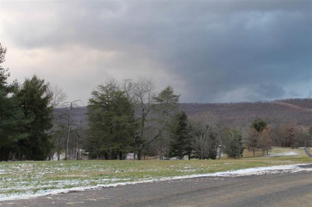 81 Mockingbird Drive, HARRISBURG, PA 17113 (#PADA108656) :: Liz Hamberger Real Estate Team of KW Keystone Realty