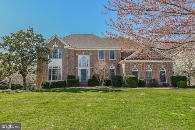 6475 Lake Meadow Drive, BURKE, VA 22015 (#VAFX1050436) :: Colgan Real Estate