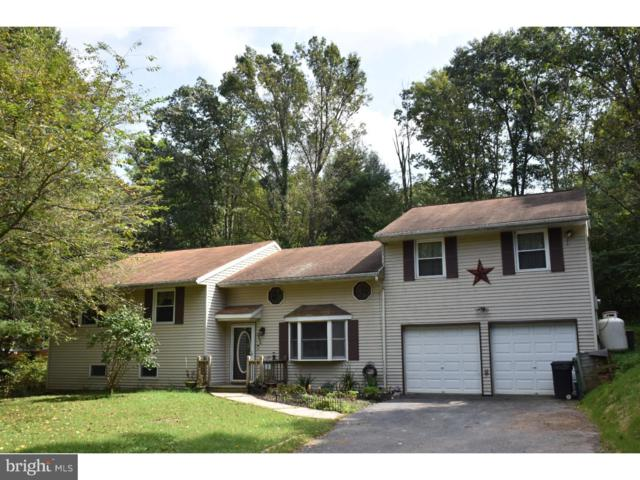 2444 Running Bear Cove, AUBURN, PA 17922 (#PASK125048) :: Ramus Realty Group