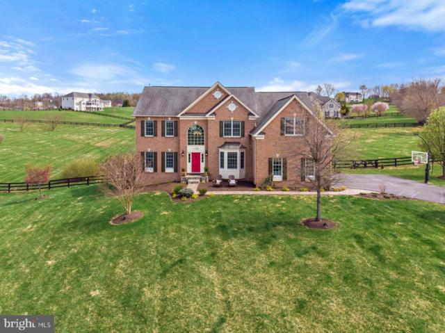 14886 Bankfield Drive, WATERFORD, VA 20197 (#VALO379528) :: LoCoMusings