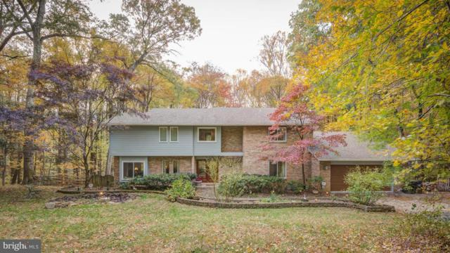 1094 Pensive Lane, GREAT FALLS, VA 22066 (#VAFX1050564) :: Colgan Real Estate