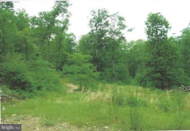 Tract 9, Kessel Way, GREAT CACAPON, WV 25422 (#WVMO115068) :: Bruce & Tanya and Associates