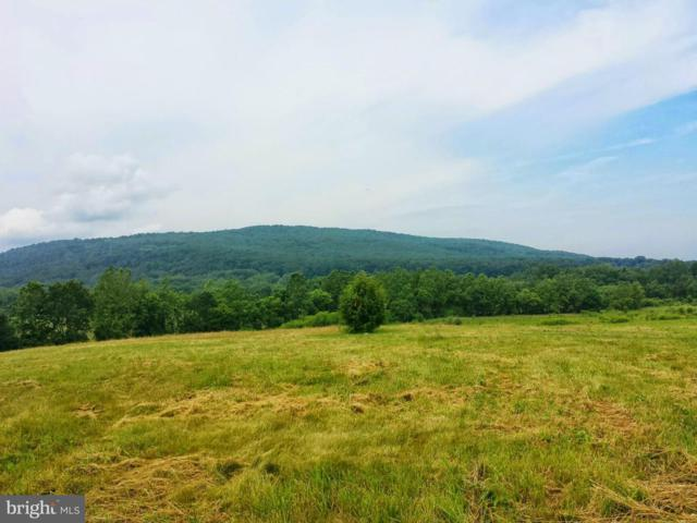 Lot 16 Spring Lane Road, DILLSBURG, PA 17019 (#PAYK113804) :: The Heather Neidlinger Team With Berkshire Hathaway HomeServices Homesale Realty