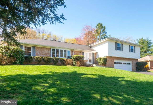 17528 Queen Elizabeth Drive, OLNEY, MD 20832 (#MDMC650322) :: The Gus Anthony Team