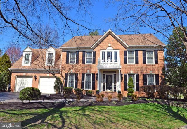 6629 Pelhams Trace, CENTREVILLE, VA 20120 (#VAFX1050824) :: Colgan Real Estate