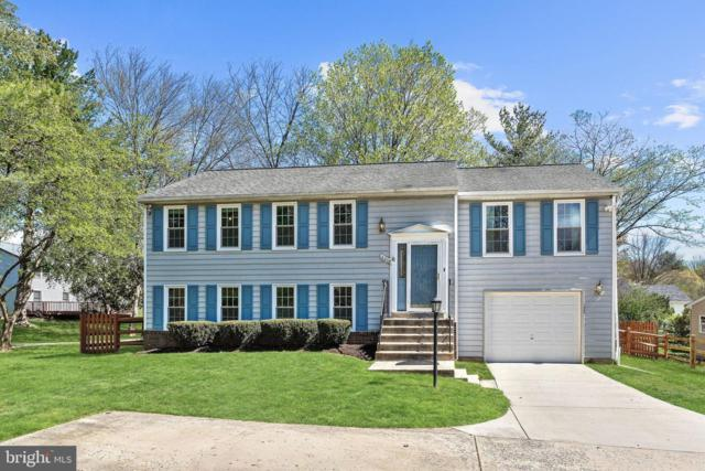6208 Bright Plume, COLUMBIA, MD 21044 (#MDHW261112) :: Shamrock Realty Group, Inc