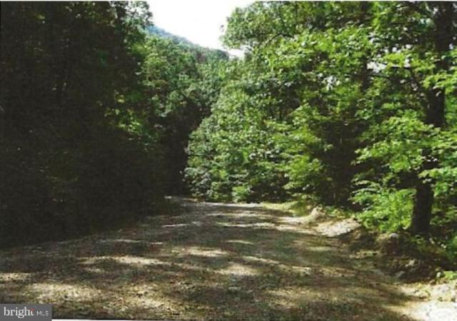 Tract 9 & 12, Kessel Way, GREAT CACAPON, WV 25422 (#WVMO115080) :: Bruce & Tanya and Associates