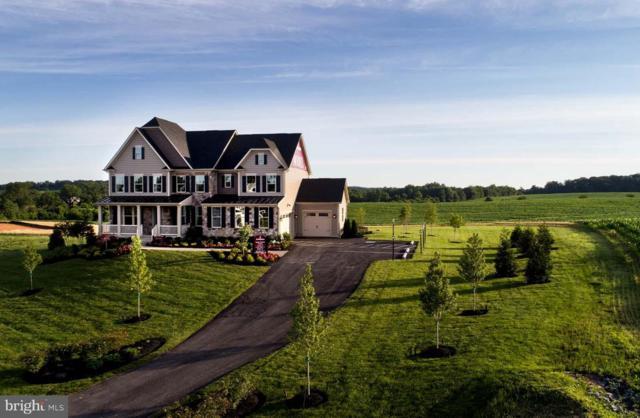 21 Peach Tree Road, DICKERSON, MD 20842 (#MDMC650566) :: Colgan Real Estate