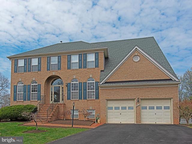 5312 Maple Valley Court, CENTREVILLE, VA 20120 (#VAFX1051284) :: Colgan Real Estate