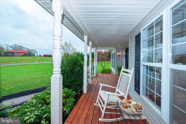15404 Cedar Hill Drive, MINERAL, VA 23117 (#VASP210928) :: Great Falls Great Homes