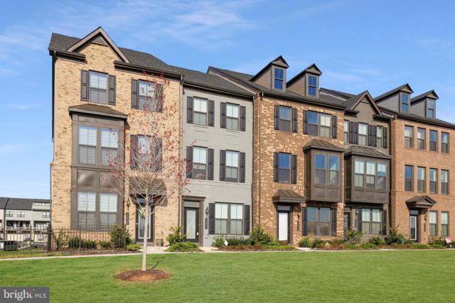 22436 Morning Shade Terrace, ASHBURN, VA 20148 (#VALO379910) :: Advance Realty Bel Air, Inc