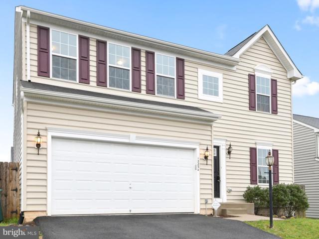 12234 Salt Cedar, CULPEPER, VA 22701 (#VACU137932) :: Colgan Real Estate