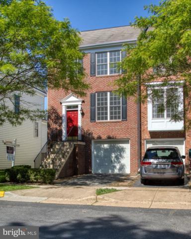 43675 Scarlet Square, CHANTILLY, VA 20152 (#VALO379970) :: Colgan Real Estate