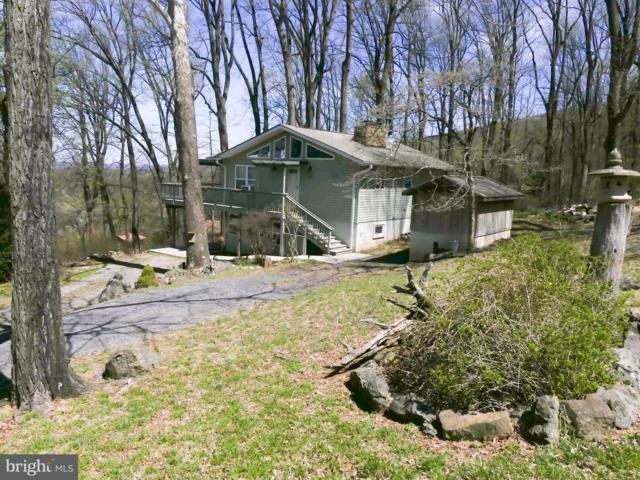 21 Beyond Tomorrow Way, LINDEN, VA 22642 (#VAWR136338) :: Remax Preferred | Scott Kompa Group