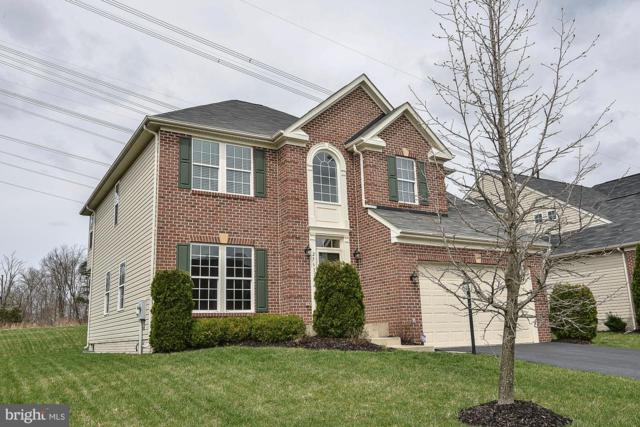 25631 Laughter Drive, ALDIE, VA 20105 (#VALO380020) :: The Miller Team