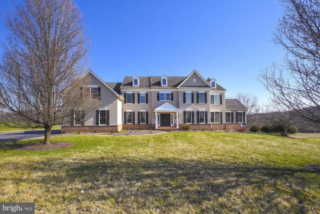 14829 Hunting Way, PHOENIX, MD 21131 (#MDBC452982) :: The Gus Anthony Team