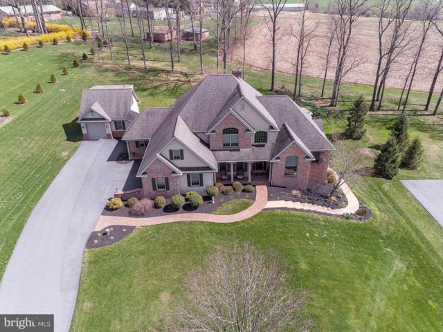 65 Autumn Leaf Lane, MANHEIM, PA 17545 (#PALA130124) :: Liz Hamberger Real Estate Team of KW Keystone Realty