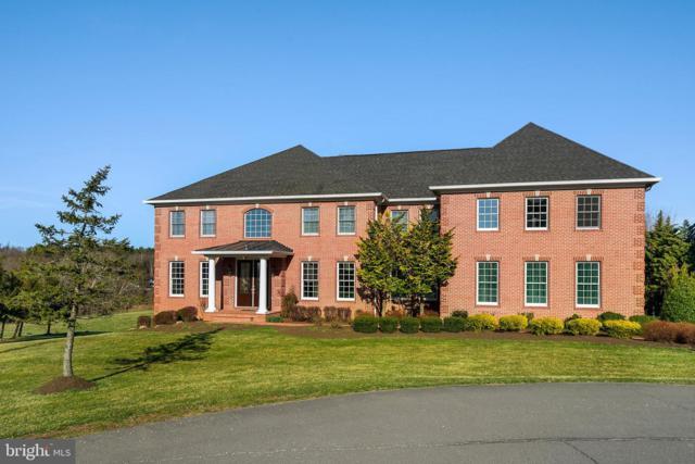 14540 Nina Court, WATERFORD, VA 20197 (#VALO380118) :: Great Falls Great Homes
