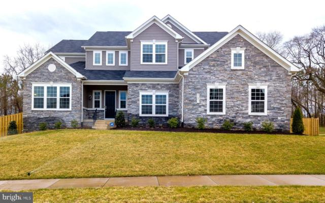 40871 Hayrake Place, ALDIE, VA 20105 (#VALO380156) :: Remax Preferred | Scott Kompa Group