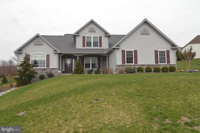 43 Marlin Avenue, WERNERSVILLE, PA 19565 (#PABK339252) :: Colgan Real Estate
