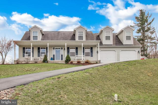 12208 Red Hawk Drive, WAYNESBORO, PA 17268 (#PAFL164658) :: The Heather Neidlinger Team With Berkshire Hathaway HomeServices Homesale Realty