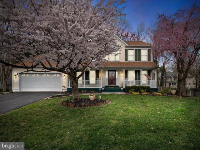 20 Apple Tree Court, BALTIMORE, MD 21228 (#MDBC453142) :: The Miller Team