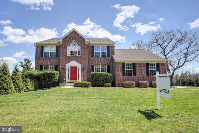 6405 Richardson Farm Lane, CLARKSVILLE, MD 21029 (#MDHW261518) :: The Sebeck Team of RE/MAX Preferred