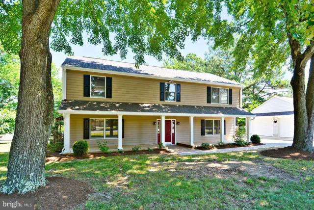 104 N Lake Drive, STEVENSVILLE, MD 21666 (#MDQA139436) :: The Gus Anthony Team
