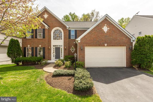 47413 River Crest Street, STERLING, VA 20165 (#VALO380552) :: The Redux Group